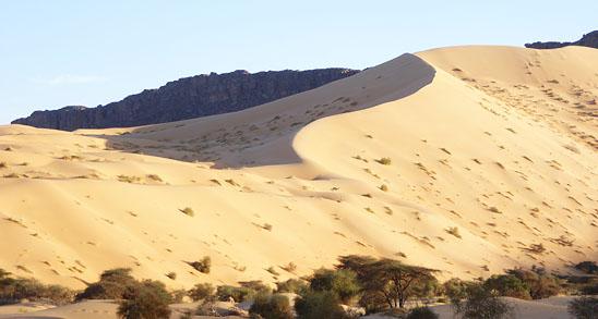 Mauretanien till val